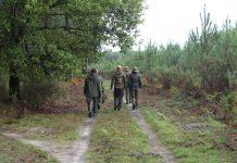 Journée de chasse dans les landes