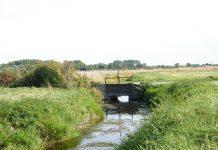 La Somme, près de l'eau